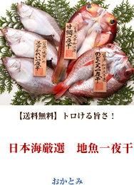 日本海厳選 地魚一夜干