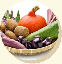 加賀野菜の写真