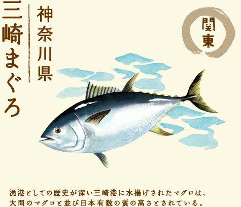 【関東 神奈川県 三崎まぐろ】漁港としての歴史が深い三崎港に水揚げされたマグロは、大間のマグロと並び日本有数の質の高さとされている。