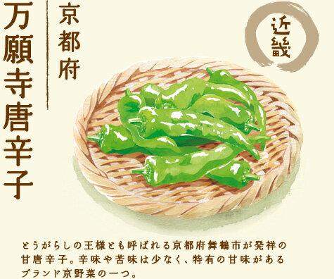 【近畿 京都府 万願寺唐辛子】とうがらしの王様とも呼ばれる京都府舞鶴市が発祥の甘唐辛子。辛味や苦味は少なく、特有の甘味があるブランド京野菜の一つ。