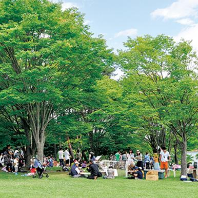 芸術むら公園
