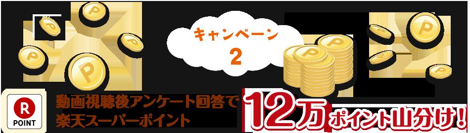 キャンペーン2 動画視聴後アンケート回答で12万ポイント山分け!