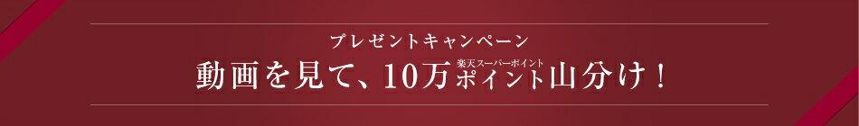 プレゼントキャンペーン 動画を見て、10万ポイント山分け!