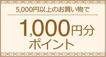 5,000円以上のお買い物で1,000円分ポイント