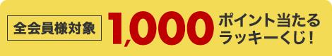48時間限定!ラッキーくじで毎日60名様に1,000ポイントが当たるチャンス!欲しかったアイテムをお得にゲットしよう!