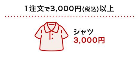 1注文で3,000円(税込)以上