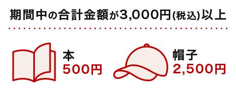 期間中の合計金額が3,000円(税込)以上