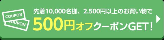 先着10,000名様2,500円以上のお買い物で使える500円オフクーポンプレゼント!