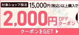15,000円以上購入で2,000円OFFクーポンをGET