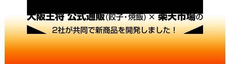 そんな2018年のグルメトレンドを踏まえて、大阪王将 公式通販(餃子・焼飯) × 楽天市場の2社が共同で新商品を開発しました!