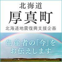 北海道厚真町復興支援