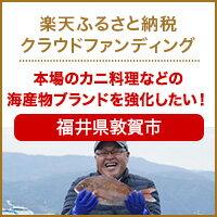 クラウドファンディング[福井県敦賀市]