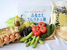 ふるさとフレッシュ便(お米・卵・各種野菜入り)