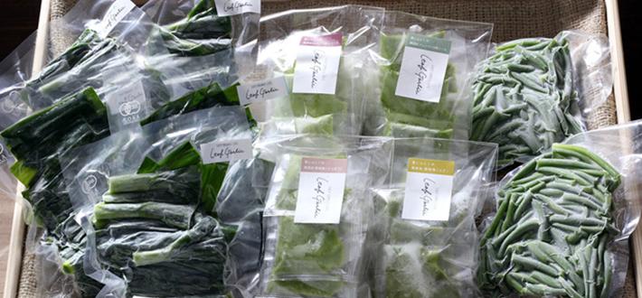 【高知県須崎市】有機農家の葉ニンニクづくしセット