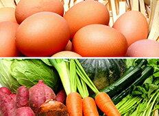 「旬のお野菜+産みたて濃厚玉子」の大満足セット