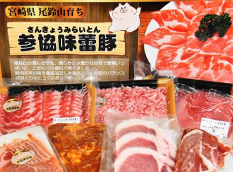 参協味蕾豚満喫セット