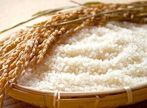 宮崎県産「ヒノヒカリ」無洗米6kg