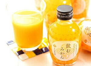 人気のストレートみかんジュース!飲むみかん(20本)
