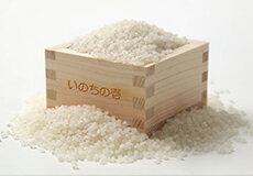 特別栽培米いのちの壱
