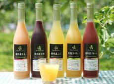 信州産くだもの果汁100%ジュース500ml×5本セット