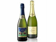 老舗ワイナリーが作る甲州スパークリングワインを2本セットでお届け