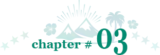 chapter # 03