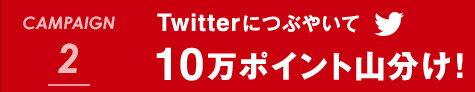 CAMPAIGN 2 Twitterにつぶやいて10万ポイント山分け!