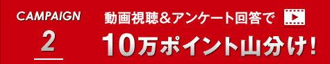 CAMPAIGN 2 動画視聴&アンケート回答で10万ポイント山分け!