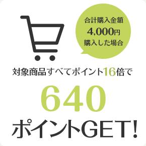対象商品すべてポイント16倍で640ポイントGET!