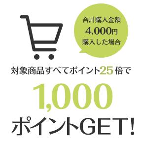 合計購入金額4,000円購入した場合対象商品すべてポイント25倍で1000ポイントGET!