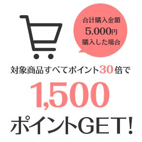 合計購入金額5,000円購入した場合対象商品すべてポイント30倍で1500ポイントGET!