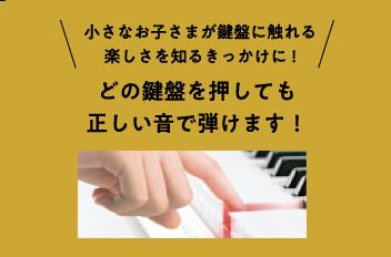小さなお子さまが鍵盤に触れる楽しさを知るきっかけに!どの鍵盤を押しても正しい音で弾けます!