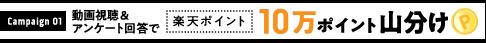 campaign01 動画視聴&アンケート回答で楽天ポイント10万ポイント山分け