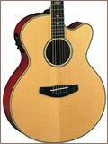 エレクトリックアコースティックギター