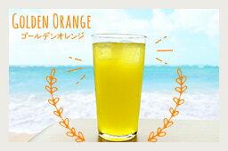 GOLDEN ORANGE - ゴールデンオレンジ