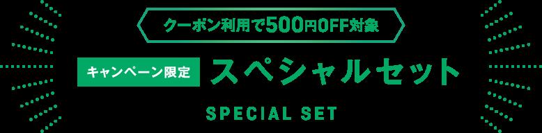 クーポン利用で500円OFF対象 キャンペーン限定 スペシャルセット