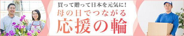 買って贈って日本を元気に!母の日でつながる応援の輪