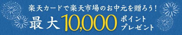 最大10,000ポイントプレゼント