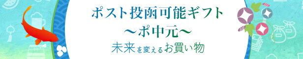 ポスト投函ギフト~ポ中元~ 未来を変えるお買い物