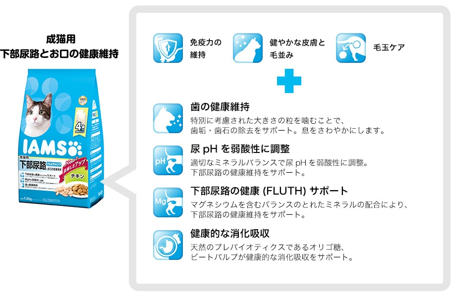 下部尿路とお口の健康維持