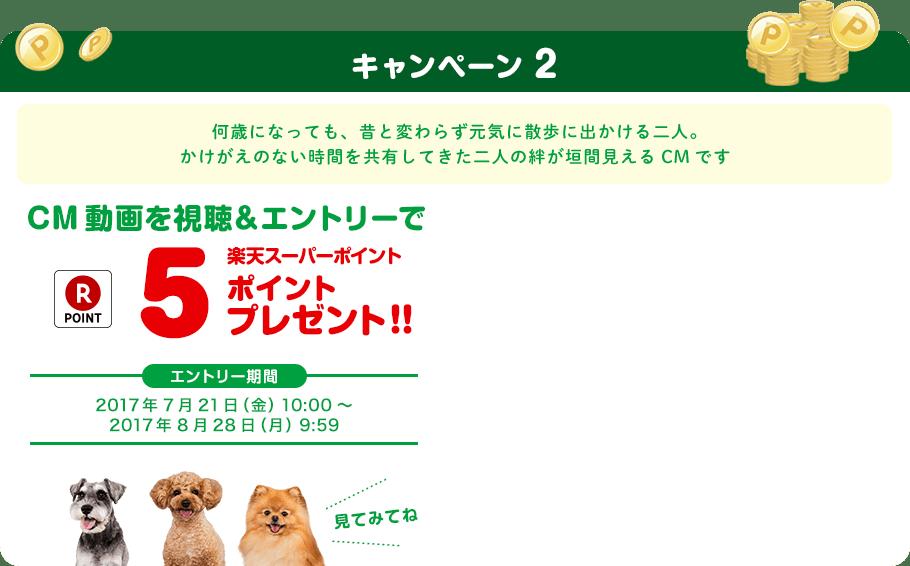キャンペーン2 話題のCM動画を視聴して楽天スーパーポイント5ポイントプレゼント!!