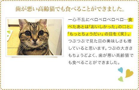 【歯が悪い高齢猫でも食べることができました。】一心不乱にペロペロペロペロ…食べたあとは「おいしかった」の口と、「もっとちょうだい」の目を(笑)。つぶつぶで見た目の美味しさも増していると思います。つぶの大きさもちょうどよく、歯が悪い高齢猫でも食べることができました。