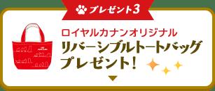 プレゼント3 ロイヤルカナンオリジナルリバーシブルトートバッグプレゼント!