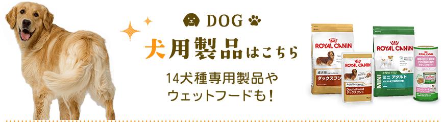 犬用製品はこちら 14犬種専用製品や ウェットフードも!