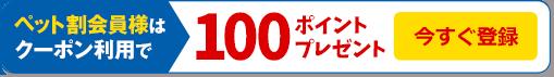 ペット割会員様はクーポンご利用で100ポイントプレゼント 今すぐ登録
