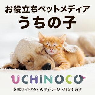【UCHINOCO】
