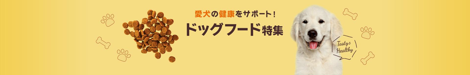 ドッグフード特集 愛犬の健康をサポート!