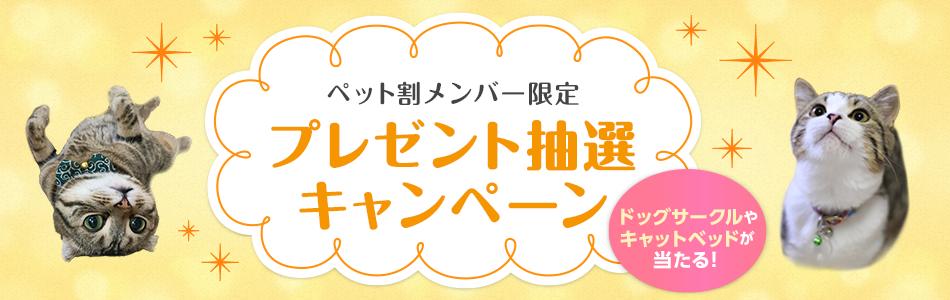 【ペット割メンバー限定】プレゼント抽選キャンペーン