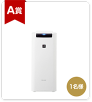 シャープ加湿空気清浄機(KI-LS40-W)