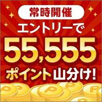【常時開催】エントリーで55,555ポイント山分け!